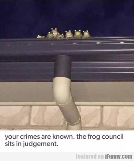 Your Crimes Are Known. The Frog Council...
