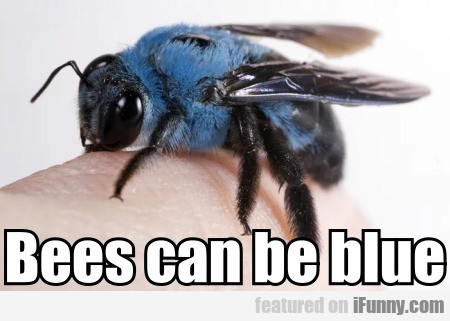 Bees Can Be Blue