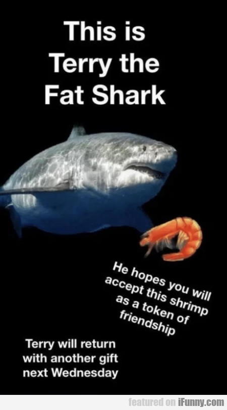 This is Terry the Fat Shark - He hopes you...