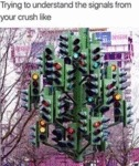 Trying To Understand The Signals From Your Crush..