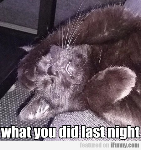 What You Did Last Night...