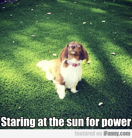 Staring At The Sun For Power