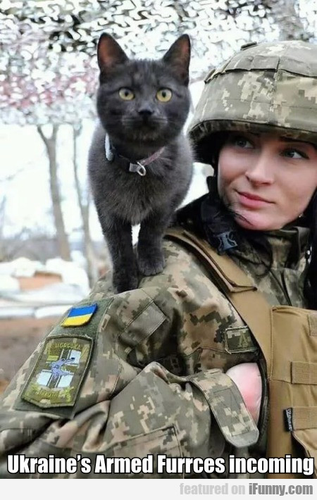 Ukraine's Armed Furrces Incoming