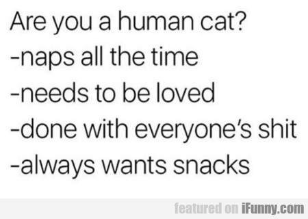 Are You A Human Cat?
