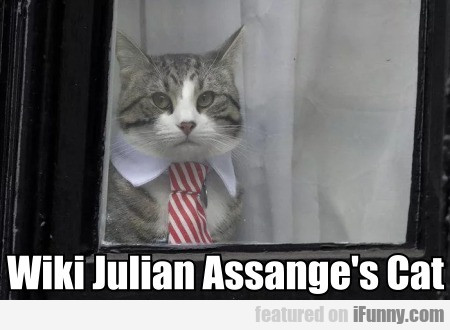 Wiki Julian Assange's Cat