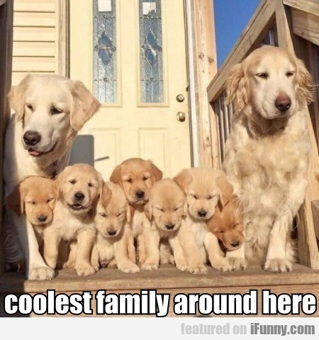 Coolest Family Around Here