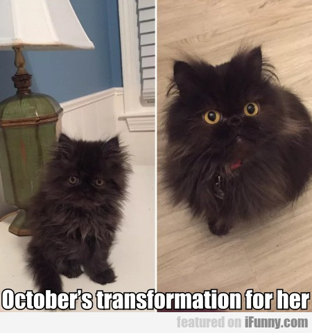 October's Transformation For Her