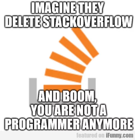 Imagine They Delete Stackoverflow And Boom...