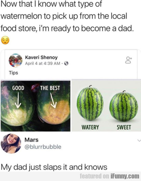 Now That I Know What Type Of Watermelon To...