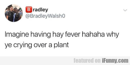 Imagine having hay fever