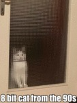 8 Bit Cat From The 90s