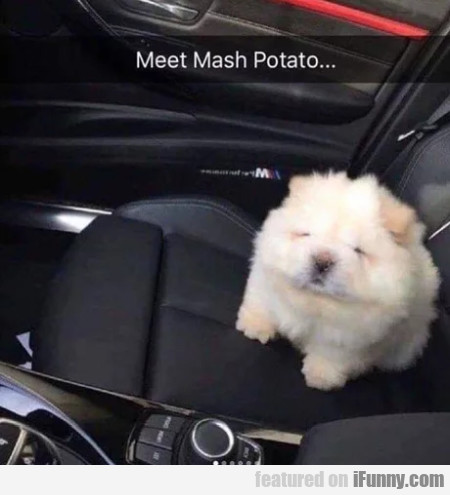 Meet Mash Potato