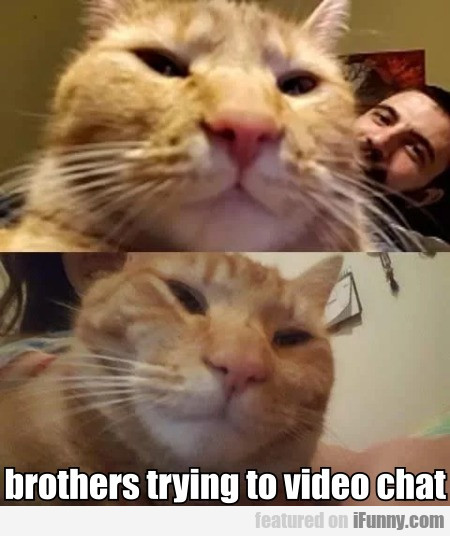 Brothers Trying To Video Chat