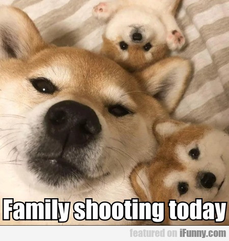 Family Shooting Today