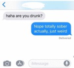 Haha Are You Drunk Nope