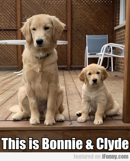 This Is Bonnie & Clyde