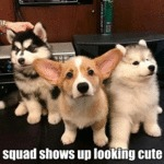Squad Shows Up Looking Cute