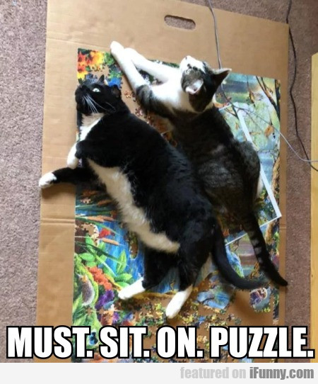 Must. Sit. On. Puzzle.