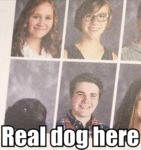 Real Dog Here
