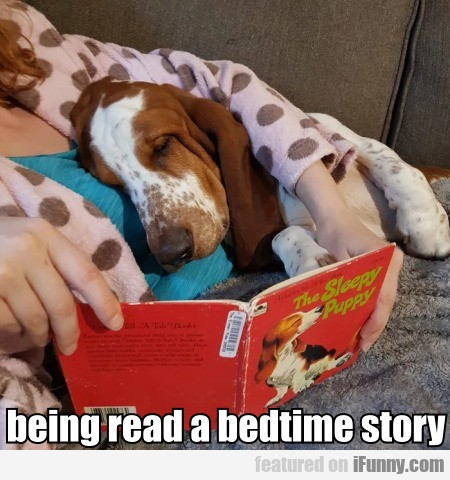 Being Read A Bedtime Story
