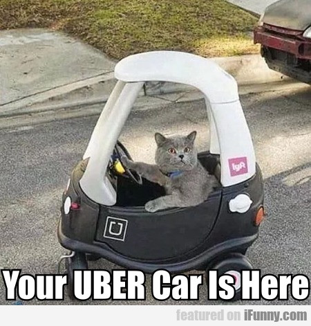 Your UBER Car Is Here