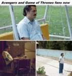 Avengers And Game Of Thrones Fans Now