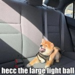 Hecc The Large Light Ball