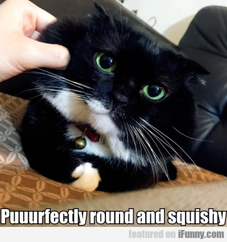 Puuurfectly round and squishy