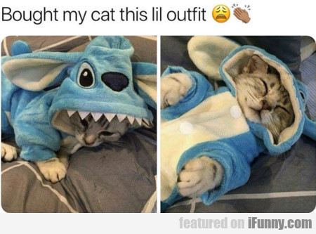 Bought My Cat This Lil Outfit