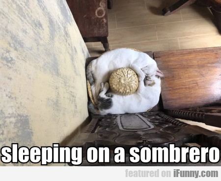 sleeping on a sombrero