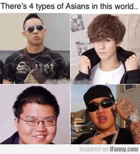 There's 4 types of Asians in this world