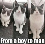 From A Boy To Man