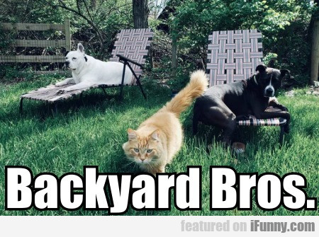 Backyard Bros
