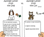 Apology Letter From The Dog Vs. ... From The Cat