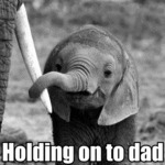 Holding On To Dad