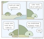 Turtles Are Awesome. I Say This As A Turtle.