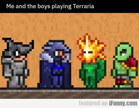 Me and the boys playing Terraria