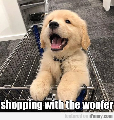 Shopping With The Woofer