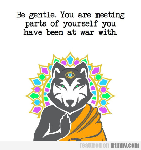 Be Gentle. You Are Meeting Parts Of Yourself You