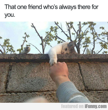 That one friend who was always there for you