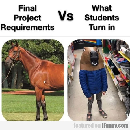 Final Project Requirements Vs What Students