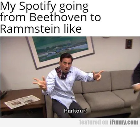 My Spotify Going From Beethoven To Rammstein...