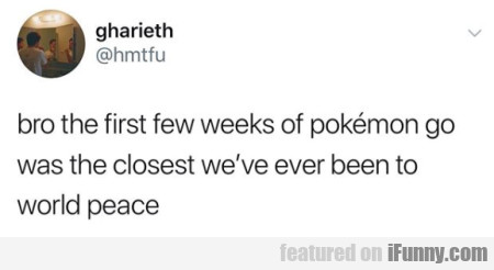 bro the first few weeks of pokemon go was the...