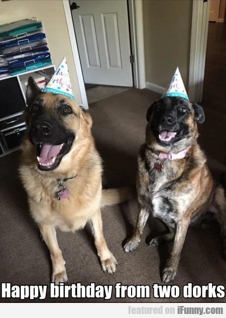 Happy Birthday From Two Dorks