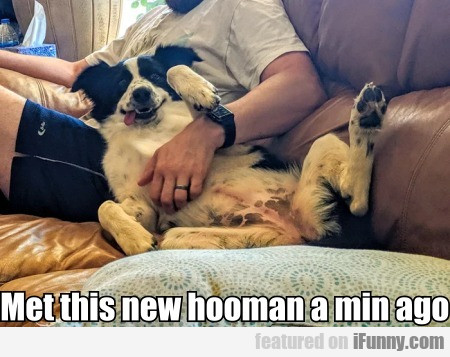 Met this new hooman a min ago