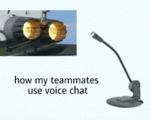 How My Teammates Use Voice Chat