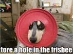 Tore A Hole In The Frisbee