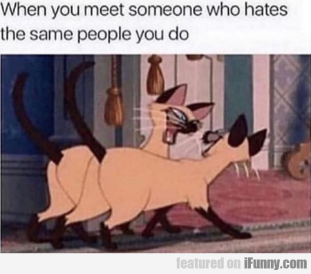 When You Meet Someone Who Hates The Same