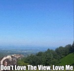 Don't Love The View, Love Me