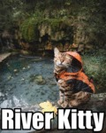 River Kitty